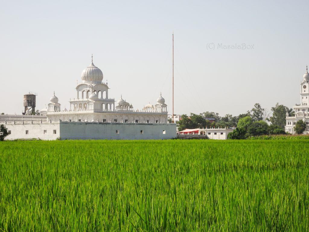 Gurudwara Punjab