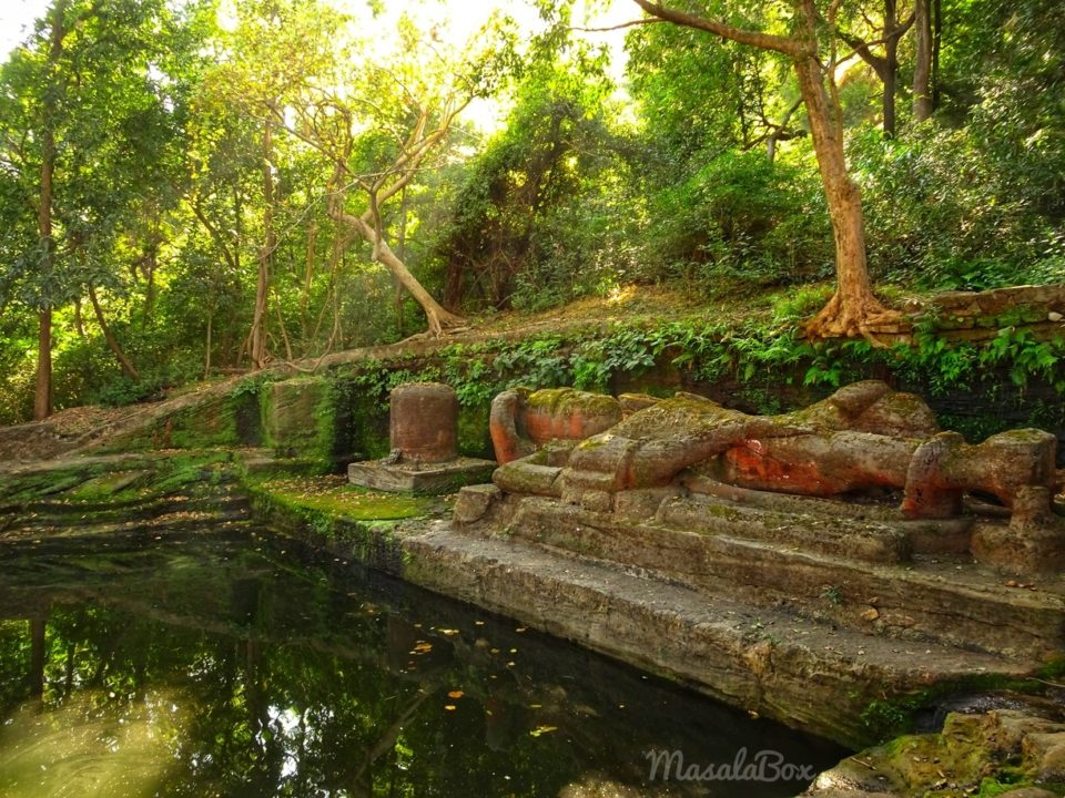 Shesh Shaiya – The Vishnu Statue inside Bandhavgarh National Park